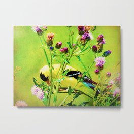 Goldfinch Yellow Bird Purple Flowers A101 Metal Print