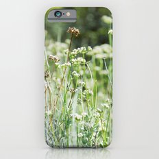 A Beautiful Day Slim Case iPhone 6s