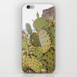 Superstition Cactus iPhone Skin