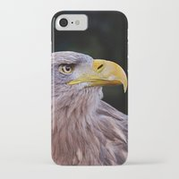predator iPhone & iPod Cases featuring Predator by DistinctyDesign