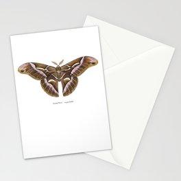 Ailanthus Silkmoth (Samia cynthia) Stationery Cards