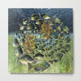 Bluegill Dragons Metal Print