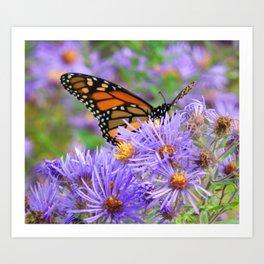 Monarch Butterfly Purple Lunch Art Print
