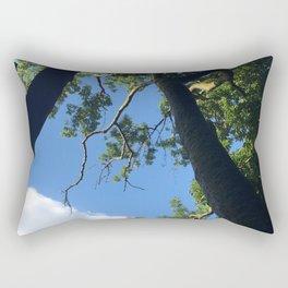 Incremental Photography Rectangular Pillow