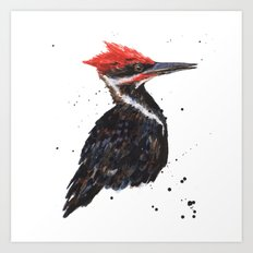 Woodpecker painting, bird paintings, bird lover gift, pileated woodpecker Art Print