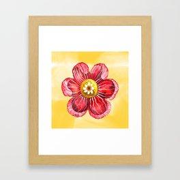 Red Flower Framed Art Print