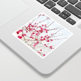 Beautiful Cherry Blossoms at the Imperial Palace in Kyoto, Japan Sticker