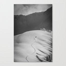 Sled Canvas Print