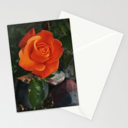 Grandmother's Garden Stationery Cards