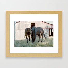 In For The Long Haul (Horses in Northern California) Framed Art Print