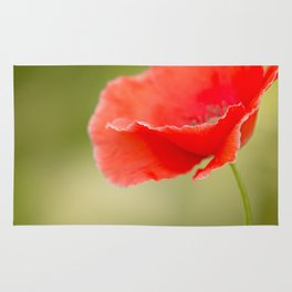 Miss you so much Red Poppy #decor #society6 Rug