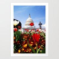 patriotic Art Prints featuring Patriotic Tulips by Madison Webb