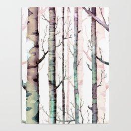 Birch Tree Forest Poster