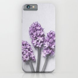 Three Light Purple Hyacinths iPhone Case