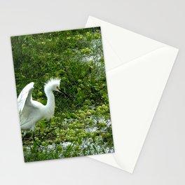 Fancy Dance Egret Stationery Cards
