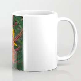 Red Bird of Paradise #1 Coffee Mug