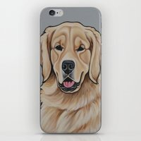 golden retriever iPhone & iPod Skins featuring Golden Retriever  by Cheney Beshara