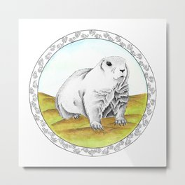 Black Tailed Prairie Dog Metal Print
