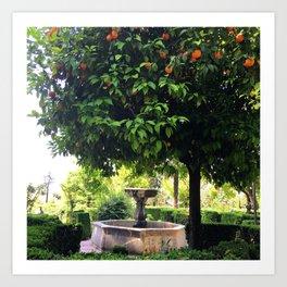 Spanish Gardens Art Print