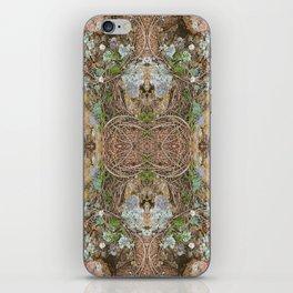 Down to Earth iPhone Skin