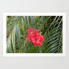 Tropical flower with palm tree branches Art Print
