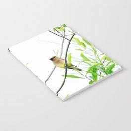 Cedar Waxwing Notebook