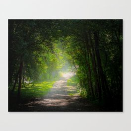 Escape From The Darkness Canvas Print
