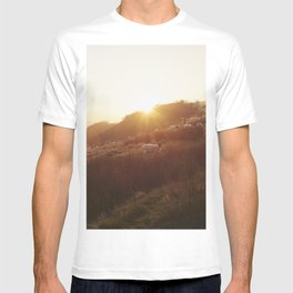 Sheep grazing on hillside at sunset. Derbyshire, UK. T-shirt