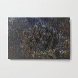 THE TREES II Metal Print