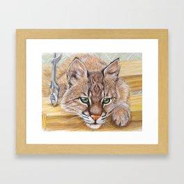 Shamrock Bobcat swing Framed Art Print