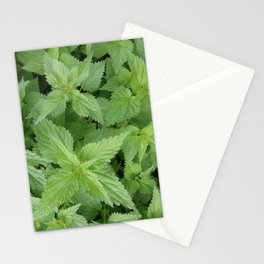 NETTLE  Magic Herb Stationery Cards