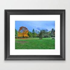 Autumn Upon Us Framed Art Print