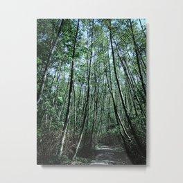 Shinrin-Yoku II Metal Print