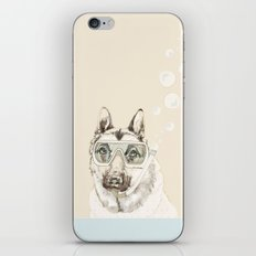 Diver Dog iPhone & iPod Skin