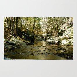 Cobb Brook Waterfall Rug