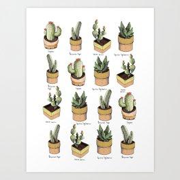 cactus names Art Print