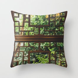 New Perspective Throw Pillow