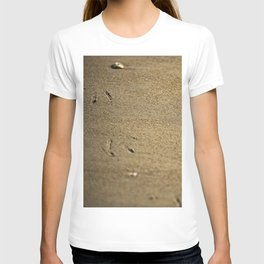 Seagull print in the sand T-shirt