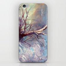 Büyülü Nehir iPhone & iPod Skin