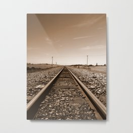 Wilderness Track Metal Print