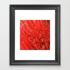 Red  &  Hairy Framed Art Print