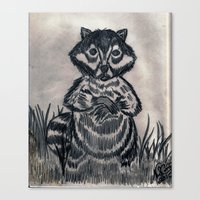 racoon Canvas Prints featuring RACOON by NEIL STUART COFFEY