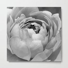 Black & White Painted Rose Metal Print