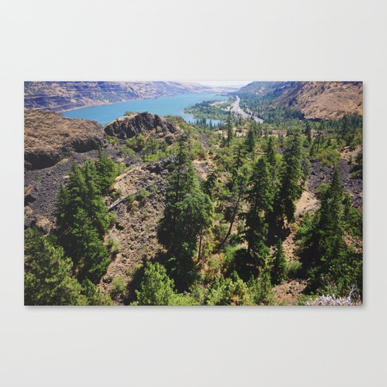 From the Tops of the Trees Canvas Print