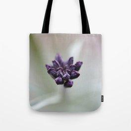 Dame's Rocket Buds Tote Bag