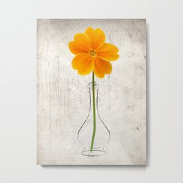 Orange Hermit Metal Print