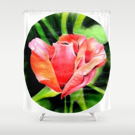 Color Rose Shower Curtain