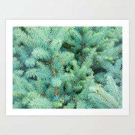 Fresh Beautiful Nature Art Print