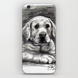 Yellow Lab iPhone Skin
