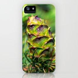 Dwarf cone iPhone Case
